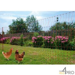 Lot de 10 piquets de rechange pour filets PoultryNet