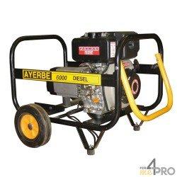 Groupe électrogène diesel Ayerbe 6500 TX Yanmar