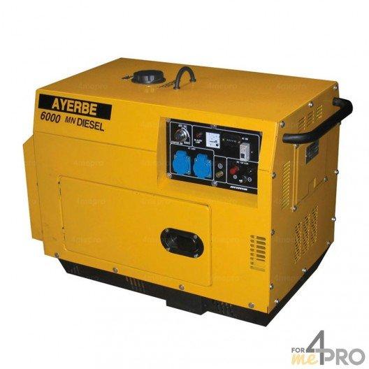 Groupe électrogène diesel insonorisé Ayerbe 6000 D TX Yanmar