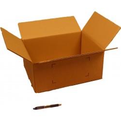 Caisse Carton GALIA A13 39,5 x 30 x 18 cm
